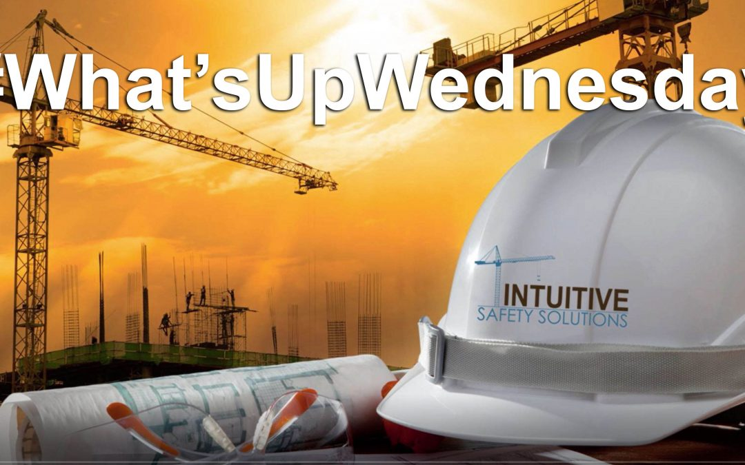 Introduction to Whatsupwednesday Video Series